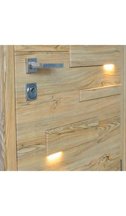 Входная дверь Straj Expo light